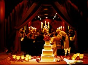 Formal wedding reception