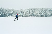 Cross_country Skier