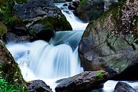 Ein kühler Bach mit Wasser und Steinen im Gebirge. Unberührte Natur.