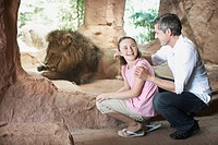 Father and Daughter Next to Lion Exhibit