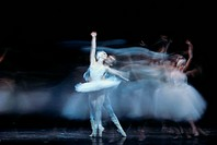 Swan Lake by Peter Ilich Tchaikovsky.