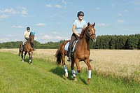Couple riding out together on Oldenburg and Trakehner Horses along the edge of a field