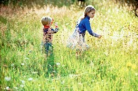 Two children picking flowers in field