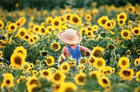 Boy running through a field of sunflowers