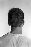Head and Shoulders of Young Man, Rear View