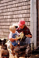 Child with his grandmother feeding the chickens