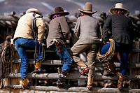 Cowboys standing along fence