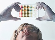 Examining a microtitre plate