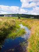 Devonport Leat near Princetown in Dartmoor National Park, Devon, England, United Kingdom  In the distance can be seen Dartmoor Prison