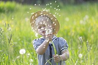 Germany, Bavaria, Girl blowing dandelion seed in meadow