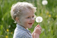 Germany, Bavaria, Boy holding dandelion seed, smiling