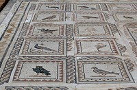 Mosaic, House of the Birds, ruins of Italica, Andalusia, Spain, Europe