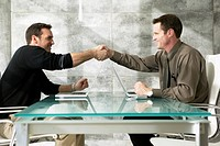 Two Businessmen Shaking Hands in Meeting