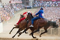 the race, contrada of the seashell and of the giraffe, palio of siena, siena, tuscany, italy, europe