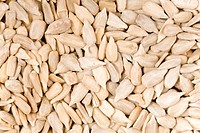Detail of sunflower seeds