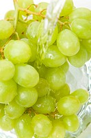Green grapes are being washed (thumbnail)