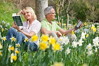 Senior couple reading book and digital tablet in sunny daffodil field