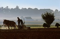Men using horse drawn plow on Amish Farm, Lancaster, Lancaster County, Pennsylvania, USA