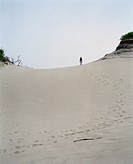 Standing at Top of Sand Dune