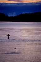 Fly Fisherman Wading in Still Water