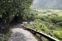 Steep mountain road with a 25% slope, Waipio Valley, Big Island, Hawaii, USA