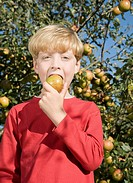 Boy Biting an Apple