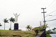 Jesus statue on hill with palm trees.
