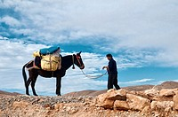 mule trekking in the Southern Atlas Mountains, Morocco