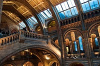 Lobby of the Natural History Museum, London