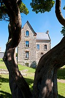 Ancien house viewed throught a tree at douarnenez france