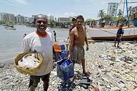 fisherman in back bay bring the daily fish load to the shore  mumbai south  mumbay city  maharashtra  india  asia
