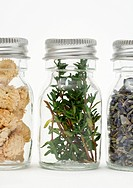 Herbs and dried flowers