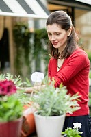 Woman looking at flowers in a flower shop (thumbnail)