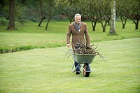 Man collecting firewood in a park (thumbnail)