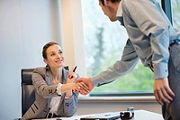 Business executive shaking hands with her client (thumbnail)