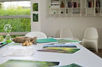 Ecology sustainable development related photographs on a table (thumbnail)