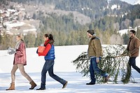 Couples and dog carrying fresh cut Christmas tree and gifts in snow (thumbnail)