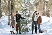 Portrait of smiling couples with fresh cut Christmas tree and sled in snowy woods