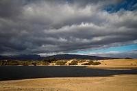 Desert _ El Oasis
