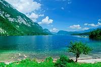 Lake Bohinj. Slovenia