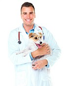Smiling young vet holding a jack russell terrier while isolated on white _ portrait