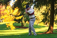 A Man Golfing At Lynnwood Golf Course, Lynnwood Washington United States Of America