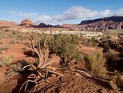 Landscape In Paria Canyon, Arizona United States Of America