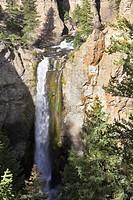 Roaring cascade falls