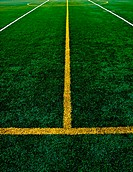 Line on astroturf