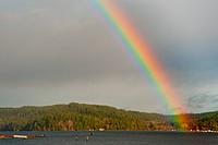 Hood Canal rainbow