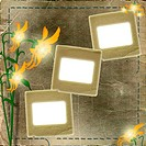 Frame for photo with flowers on the shabby background