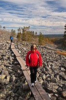 Lapland, Finland, Pallas Yllastunturi National Park, in autumn