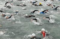 Schwimmer beim Crawlen waehrend einem Triathlon/ Triathletes crawling in a triathlone competition