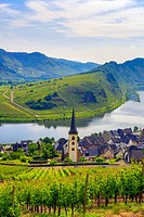 Germany, Europe, travel, Moseltal, Moselle, Valley, Bremm, agriculture, bend, church, Mosel, tourism, valley, village, vineyard, wine, agriculture